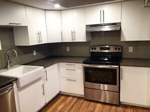 Fully Renovated 4 Bedroom Steps to Transitway