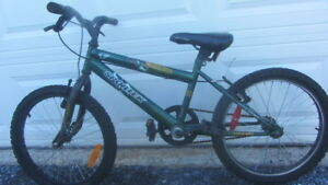 boy;s 20 inch Bicycle