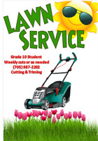 Reliable Grade 10 Student available for grass cutting.