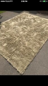 Large, Plush Area Rug