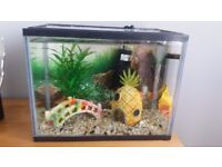 Starter fish tank with all accessories shown