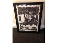 Audrey Hepburn framed picture