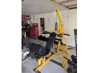 Full free weight set up