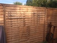 6 by 6 fence panels (11)