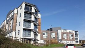Student accommodation available today
