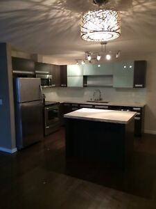 Beautiful newly renovated 2 bedroom condo for rent in Regina