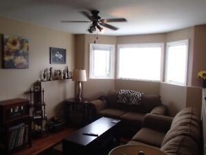 Beautiful two bedroom apartment near Octagon Pond!