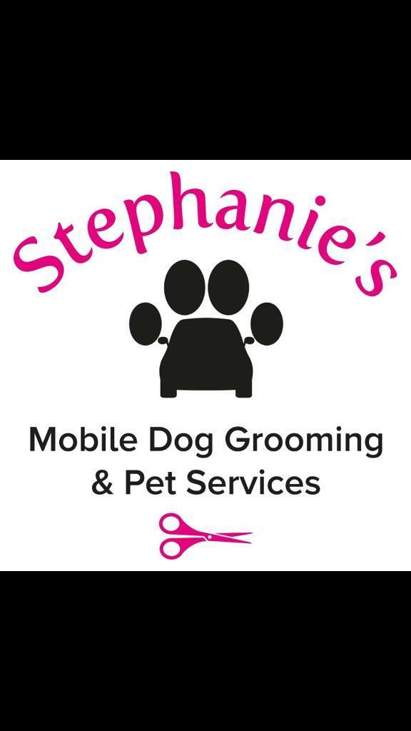 Stephanie S Mobile Dog Grooming Mobile Salon In Newcastle