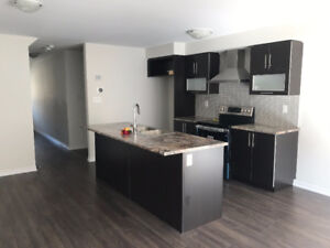 Brand New 3 bedroom+1 Townhouse Available for Renting
