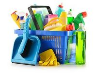 Domestic House Cleaner I can help you clean