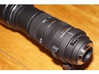 Sigma 150-500mm lens