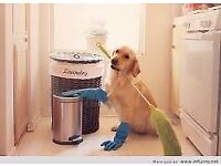 Domestic Cleaning and Ironing Service - £12.00 per hour