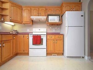 Fridge, stove, dishwasher combo
