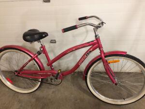 Sportek south shore bike