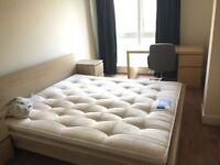 MODERN DOUBLE ROOM IN EAST INDIA - BIG FOR SINGLE USE 780 PCM BILLS INC
