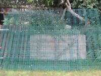 Green Meshweld fencing panels.