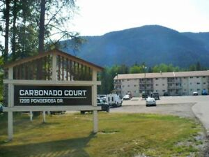 1 Bedroom Unfurnished Condo For Rent in Sparwood!