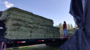 Hay Pick up, Delivery and Stacking Service