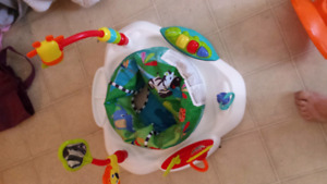 Never used exersaucer.