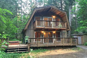 Mt. Baker Lodging - Cabin #49 - HOT TUB, WIFI, PETS OK, SLEEPS-6