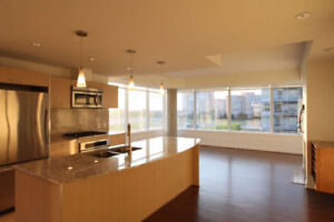 Edmonton Lofts for Sale!