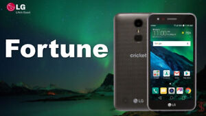 LG Fortune Unlocked phone, Only $ 125