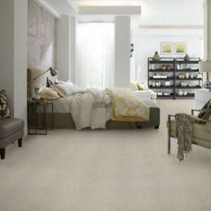 Stock Special on Shaw Caress Carpet