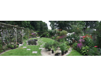 Open Garden, 1pm-5pm Sunday 20th Aug 2017 for Cats Protection Charity