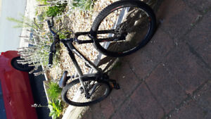 p.2 specialized dirt jumper