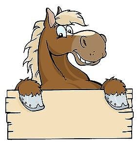 Wanted - Horse to Lease