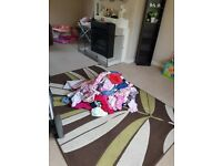 HUGE baby girl clothing bundle 6-9 9-12 months