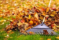 Book your Fall Yard Clean Up Now!