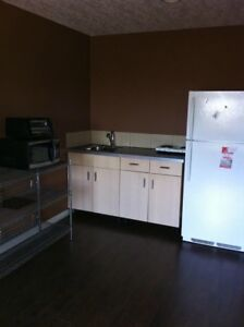 Bright walk out Basement suite Available Aug 1