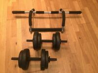 ProFitness Dumbells + Doorgym Chin-up Bar