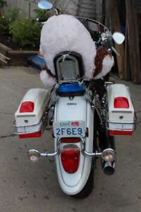 Brand New !!  White Hard  Plastic  Saddlebags WITH LIGHTS   !