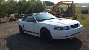 2002 Ford Mustang srs Convertible