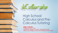 Want to Ace High School Calculus?