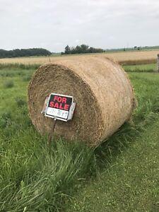 2nd Cut Hay-Round Bales
