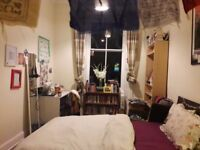 Central festival let in lovely Marchmont flat