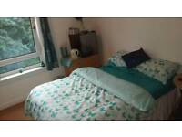 Fabulous flat with great links to city centre with free parking