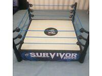 WWE wrestling ring (5)