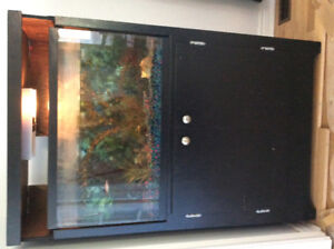 30 Gallon tank with fish, stand and all accessories