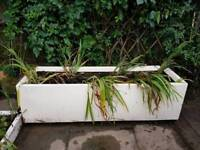 5ft planters for sale