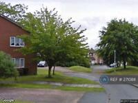 1 bedroom flat in Mercia Drive, Telford, TF1 (1 bed)