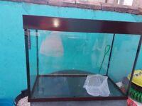 Fish tank 200lt
