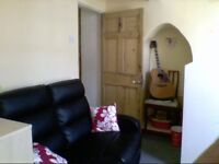 Bedsit flat in central Exeter to suit young profesional or student