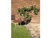 Garden Bench and Table plus Sunshade