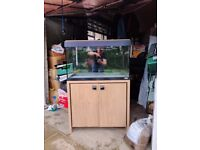 120L Fluval Roma Aquarium including stand and external 206 fluval filter.