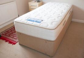Sealy Madeline, Platform Top, 2 Drawer, 3' Single Divan (includes mattress) Colour Cappucino
