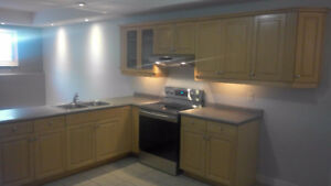 Modern, clean and beautiful Apt. Lackner/Victoria area